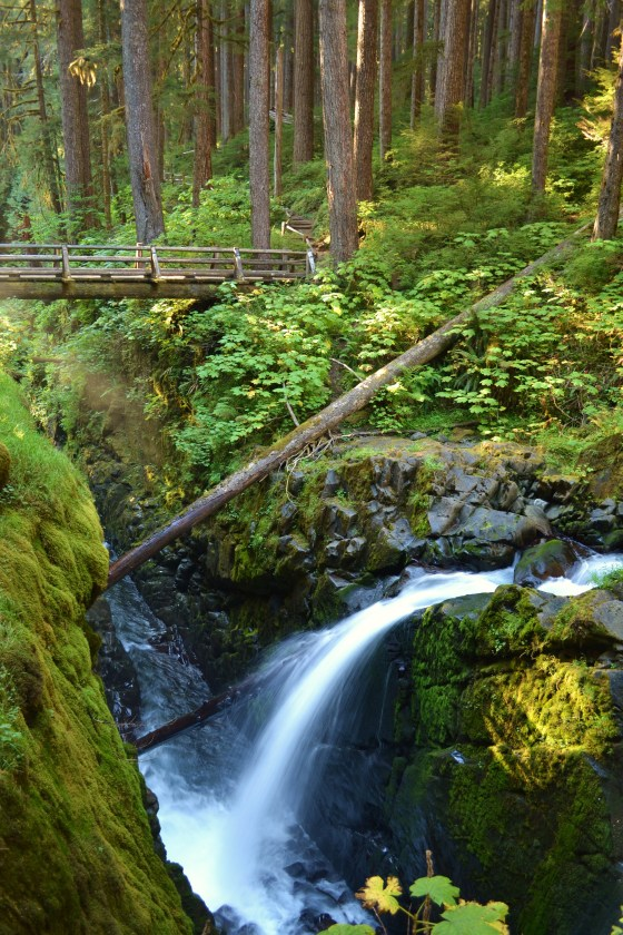 Sol Duc Falls in Olympic National Park.
